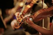 stock photo of string instrument  - Close up detail of Violin being played in Orchestra