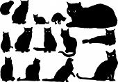 foto of interior sketch  - Illustration with silhouettes of cats on a white background - JPG
