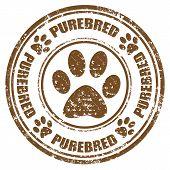 Purebred-stamp poster