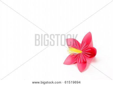 Paper Pink Flower