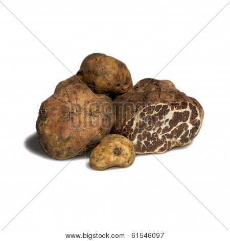 truffles tartufi