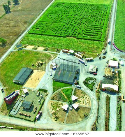 Hawes Ranch corn maze