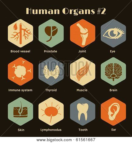Set of flat retro icons human orangs and systems