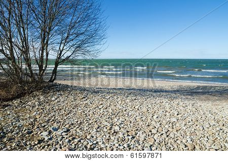 Coast Of Baltic Sea Covered By A Pebble