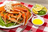 image of cooked crab  - Snow Crab legs with fresh lemon slices and butter sauce - JPG