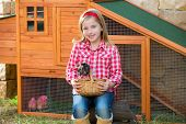 foto of hen house  - breeder hens kid girl rancher blond farmer playing with chicks in chicken hencoop - JPG