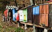 Colorful Bee Hives