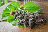 picture of mulberry  - heap of mulberry fruit and leaf on wooden table - JPG