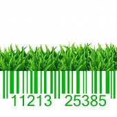 Bar code grass vector illustration