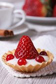 Tartlet With Fresh Strawberries, Cranberries Vertical. Close-up