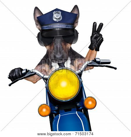 Police Dog Motorbike