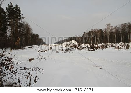 Clearing In The Khimki Forest, Winter