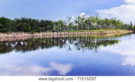 Pond.