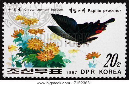 Postage Stamp North Korea 1987 Papilio Protenor And Chrysanthemu