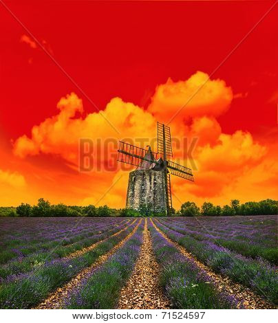 Sunset In Lavender Field. Landscape With Windmill And Dramatic Sky
