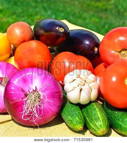 Fresh Tomatoes, Garlic, Red Onion, Cucumbers And Aubergines
