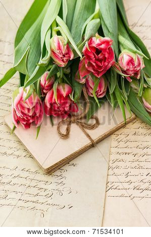 Soft Pink Tulips, Old Love Letters And Cards