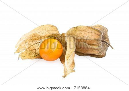 Physalis fruit (Cape gooseberry)