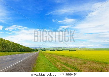 Beautiful Landscape with Green Grass Blue Sky and Road