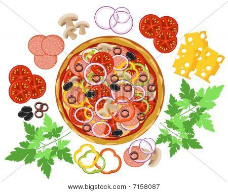 vector italian pizza on white background