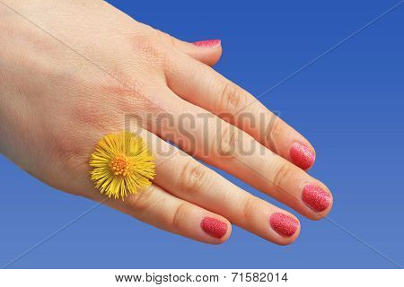 Girls Hand With Yellow Flower Against Blue Sky