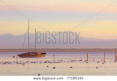 Sunset Scenery At Starnberger See, With Sailboat And Zugspitze