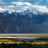 picture of jammu kashmir  - Nubra valley  - JPG