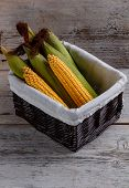 image of corn-silk  - Sweet corn cob in wicker basket - JPG