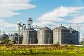 image of silos  - Industrial Silos In The Fields - JPG