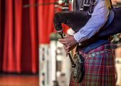 picture of bagpipes  - Scottish musicien bagpiper from a Scottish band acts as host upon arrival of transatlantic ships in the port of Invergordon in Scotland committee.