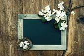 stock photo of apple blossom  - chalkboard with apple tree blossom and easter eggs decoration on rustic wooden background - JPG