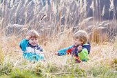 image of bulrushes  - Two little sibling boys fighting and having fun with bulrush near forest lake nature on cold spring or autumn day - JPG