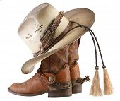 picture of boot  - Cowboy boots - JPG