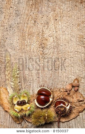 Chestnut Border