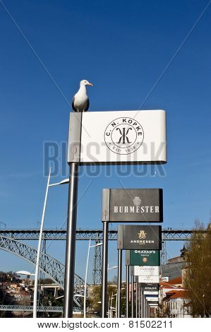 Seagull And Port Wine Billboards In Porto