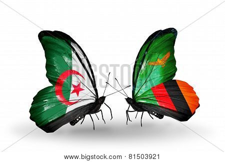 Two Butterflies With Flags On Wings As Symbol Of Relations Algeria And Zambia
