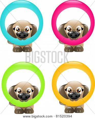 Dogs With Circle