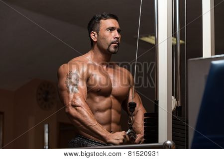 Bodybuilder Doing Exercise For Triceps