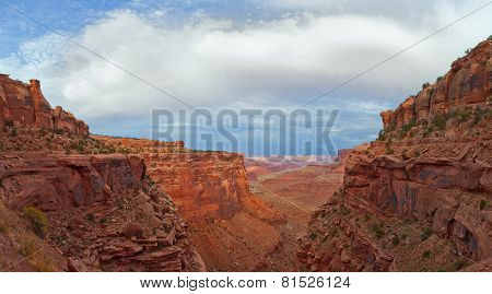 Landscape panorama of the canyon in Canyonlands national park