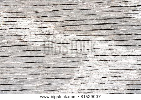 White weathered textured wood