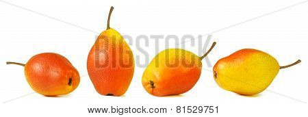 Pear standing and pears lying