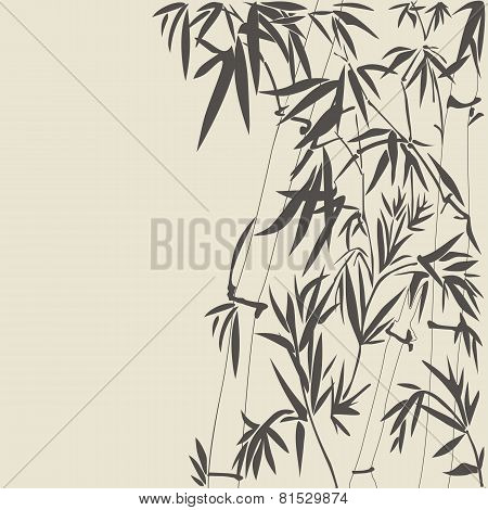 Bamboo vector illustration