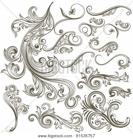 Collection Of Vector Hand Drawn Floral Swirls For Design