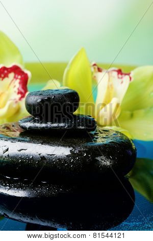 Spa stones with water drops and beautiful blooming orchid in water on natural background