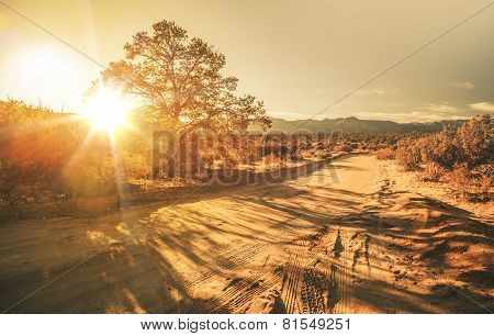 Sandy Country Road
