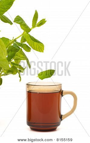 Mint Leaf Falling Into Tea Cup