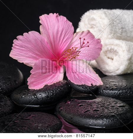 Beautiful Spa Still Life Of Pink Hibiscus, Drops And Towels On Zen Stones With Reflection Water, Clo