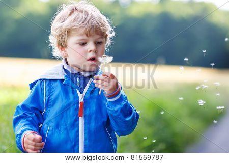Funny Cute Kid Boy Having Fun With Dandelion Flower