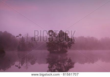 Tree Islands On Lake At Sunrise