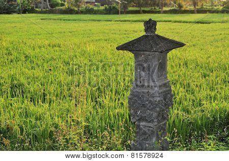 Shrine in Rice paddies near Ubud, Bali, Indonesia